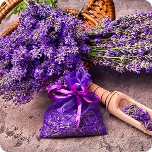 Lavender: Ingredient of Facial Beauty Oil